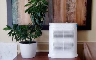 Увлажнители воздуха: польза и вред