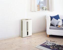 Осушитель воздуха для дома